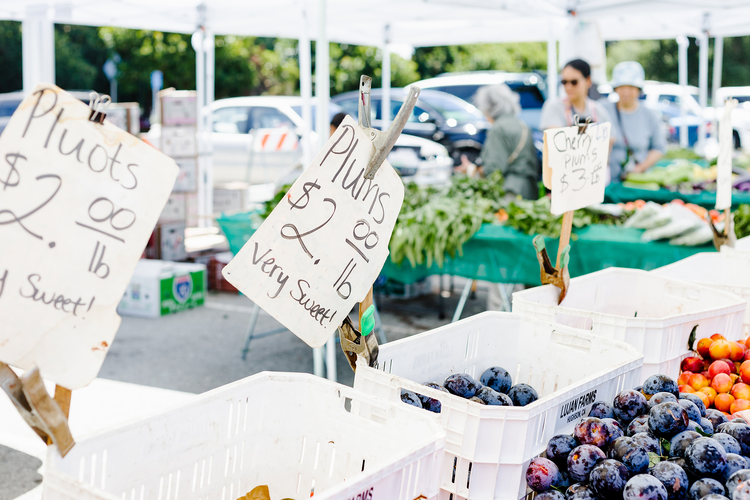 picture of blueberries and plums at a farmers market